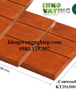 tam-op-conwood-deck12.25